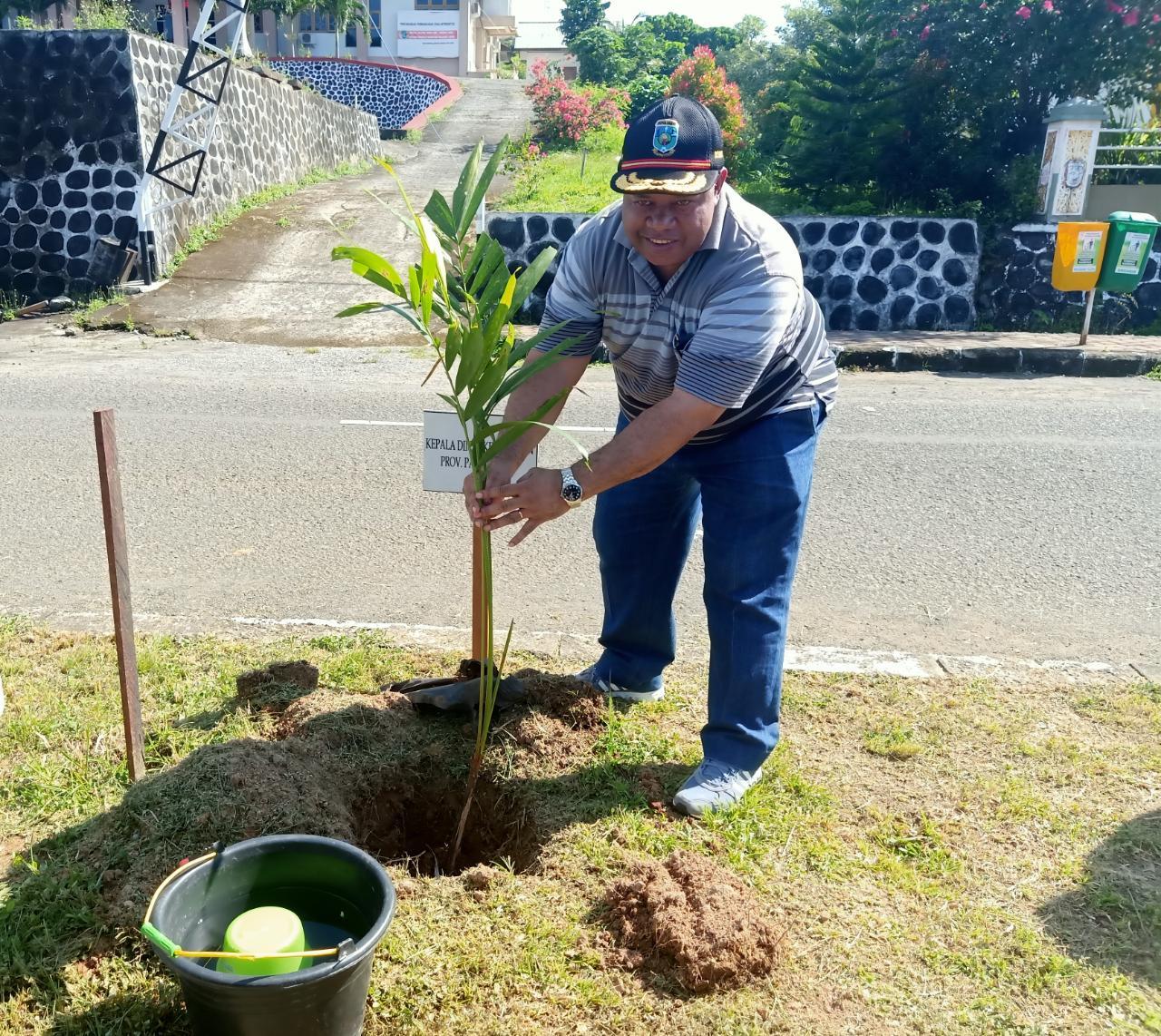 Hari Rimbawan ke-36, Dinas Kehutanan Papua Barat Tanam 200 Pohon 4 IMG 20200314 WA0015