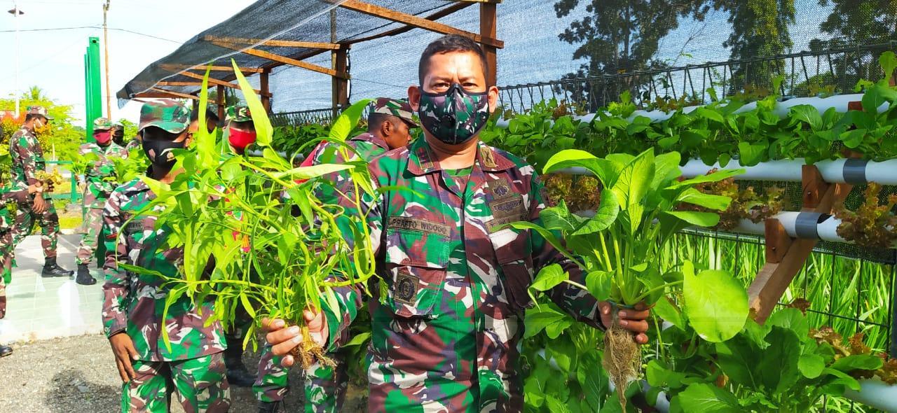 Koramil 1801-06 Masni Bersama Masyarakat Panen Sayur Mayur Dan Tanaman Hidroponik 1 IMG 20210304 WA0074