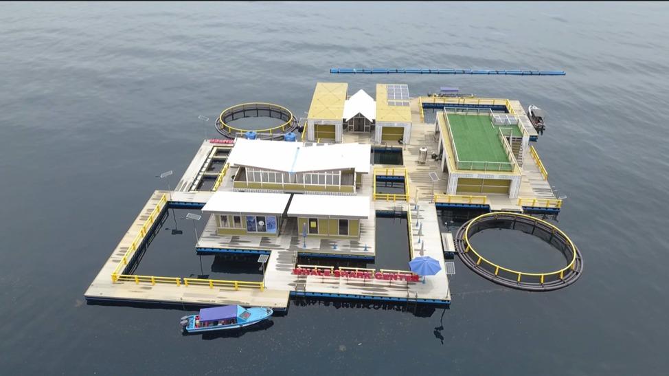 Balai Besar Taman Nasional Teluk Cenderawasih Dan CI Bangun Basis Data Populasi Hiu Paus 5 IMG 20210616 WA0019