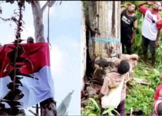 Warga Kampung Syou Warmare Kibarkan Bendera di Puncak Pohon Pisang Raksasa 17 Screenshot 20210817 162036 Photo Wonder