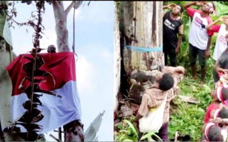 Warga Kampung Syou Warmare Kibarkan Bendera di Puncak Pohon Pisang Raksasa 2 Screenshot 20210817 162036 Photo Wonder